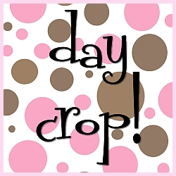 Sonoma Scrap Soir�e Day Crop!